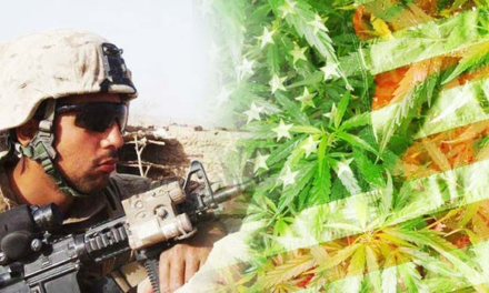 Cannabis for Veterans: How Concentrates Can Help PTSD and Pain
