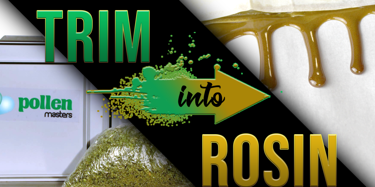 Why All Processing Facilities Should Be Utilizing Rosin Pressing
