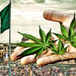Cannabis Legalization in Mexico: A Full Explainer