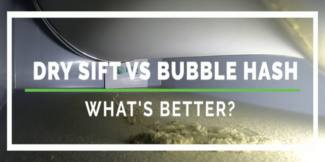 Dry Sift vs Bubble Hash
