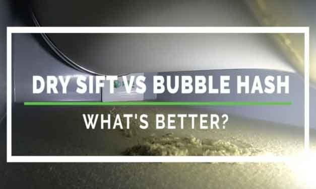 Dry Sift vs Bubble Hash
