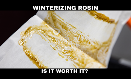 What's the Point of Winterizing Rosin?