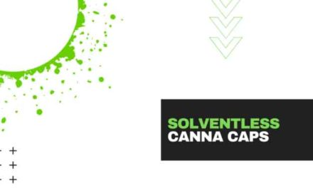 How to Make Solventless Canna Caps