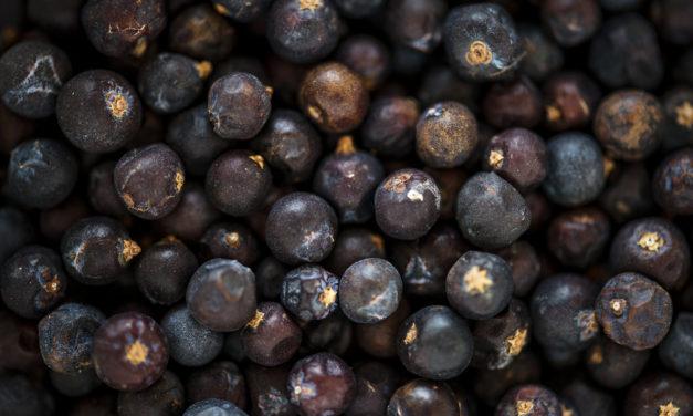 Terpenes 101: Beta-caryophyllene