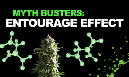 Myth Busters: Is The Entourage Effect Real?