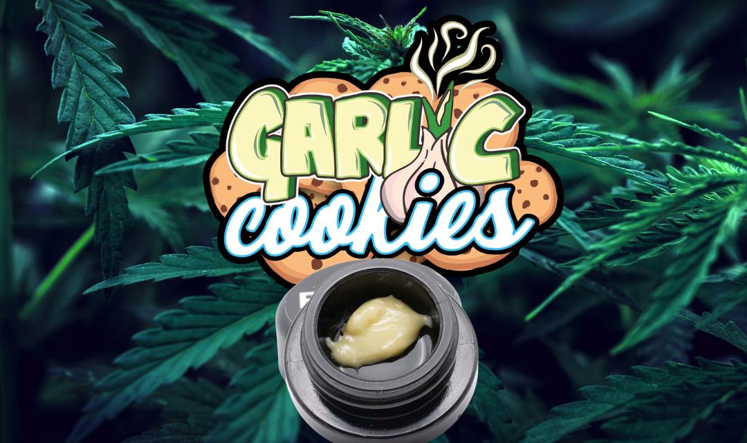 Garlic Cookies: Strain History and Information